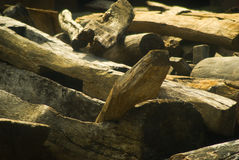 Vecchio legno della costruzione Fotografia Stock Libera da Diritti