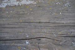 Vecchio legno della priorità bassa Fotografia Stock