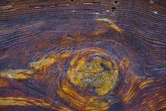 Vecchio legno di quercia Fotografia Stock