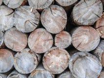 Vecchio legno di struttura d'annata molto piacevole del fondo con le crepe, filtrate La struttura interna degli anelli dell'alber fotografia stock libera da diritti