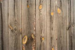Vecchio legno Fondo Fotografie Stock