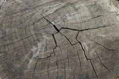 Vecchio legno incrinato Fotografia Stock Libera da Diritti