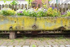 Vecchio letto di fiore di pietra coperto di muschio con le viole del pensiero variopinte, la strada del ciottolo e un recinto di  immagini stock libere da diritti