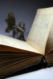 Vecchio libro 5 Immagini Stock