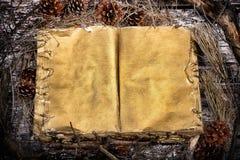 Vecchio libro aperto di mistero sul fondo di legno della foresta naturale Immagini Stock