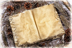 Vecchio libro aperto di mistero sul fondo di legno della foresta naturale Immagini Stock Libere da Diritti