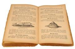 Vecchio libro di cucina Fotografia Stock