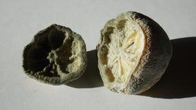 Vecchio limone fotografie stock