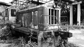 vecchio locomotivo invaso con l'uva selvaggia Fotografia Stock Libera da Diritti