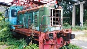 vecchio locomotivo invaso con l'uva selvaggia Fotografie Stock Libere da Diritti