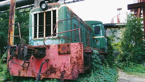 vecchio locomotivo invaso con l'uva selvaggia Fotografia Stock