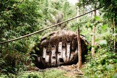 Vecchio luogo di sepoltura torajan in Bori, Tana Toraja Il cimitero con le bare disposte in una roccia enorme Rantapao, Sulawesi, immagini stock libere da diritti