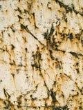 Vecchio marmo   Fotografie Stock