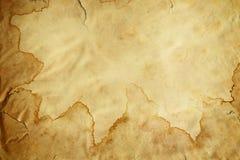 Vecchio marrone d'annata della pergamena di lerciume Fotografia Stock