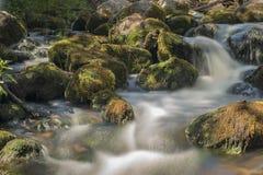 Vecchio, mulino a acqua abbandonato con le correnti dell'acqua e piccole cascate Immagine Stock