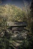 Vecchio mulino a acqua nella foresta Fotografia Stock Libera da Diritti