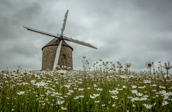 Vecchio mulino a vento in Bretagna, Francia Fotografia Stock Libera da Diritti