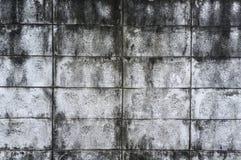 Vecchio muro di cemento Fotografie Stock Libere da Diritti