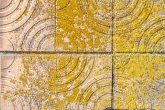 Vecchio muro di cemento che è coperto parzialmente di piastrelle di ceramica, struttura del fondo Fotografia Stock