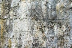 Vecchio muro di cemento con le tracce di distruzione e di muffa fotografie stock libere da diritti