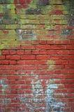 Vecchio muro di mattoni con il fungo ed il decadimento Immagine Stock Libera da Diritti