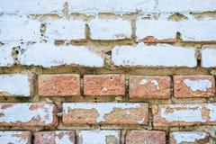 Vecchio muro di mattoni della sbucciatura blu con pittura, fine di struttura del fondo su fotografia stock libera da diritti