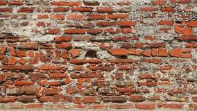 Vecchio muro di mattoni rosso rustico di struttura Immagine Stock
