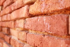 Vecchio muro di mattoni senza rinnovamento Immagini Stock