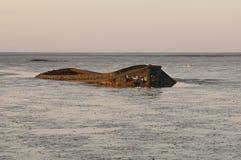Vecchio naufragio Immagini Stock Libere da Diritti