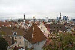 Vecchio orizzonte della città di Tallinn Immagine Stock