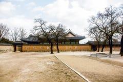 Vecchio palazzo ed alberi aridi Fotografia Stock Libera da Diritti