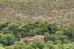 Vecchio palazzo fra gli alberi Immagini Stock Libere da Diritti