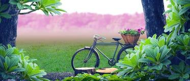 Vecchio parco della bicicletta Fotografie Stock