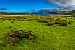 Vecchio pascolo di Rusty Vintage Plough On Green con le pecore alla costa dell'isola di Skye In Scotland immagini stock libere da diritti