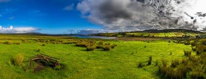 Vecchio pascolo di Rusty Vintage Plough On Green con le pecore alla costa dell'isola di Skye In Scotland fotografia stock