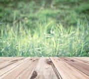 Vecchio pavimento di legno davanti al fondo d'annata della natura della sfuocatura Fotografie Stock