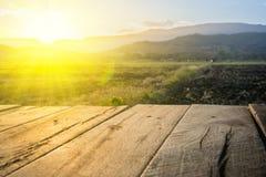 Vecchio pavimento di legno marrone accanto al campo agricolo nel tramonto del fascio e di sera Fotografia Stock Libera da Diritti
