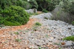 Vecchio percorso della ghiaia Fotografie Stock