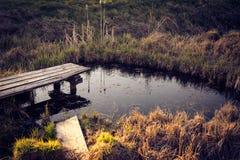Vecchio percorso di legno sopra il piccolo stagno in giardino in molla in anticipo Fotografia Stock Libera da Diritti