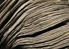 Vecchio pezzo di legno Fotografia Stock