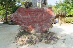 Vecchio piatto di legno rosso sulla spiaggia Fotografia Stock Libera da Diritti