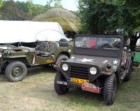 Vecchio picnic dell'automobile Fotografia Stock Libera da Diritti