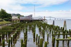 Vecchio pilastro di pesca coperto in muschio fotografia stock