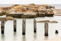 Vecchio pilastro, spiaggia di Lillies, isola del Flinders, Tasmania Fotografia Stock