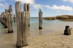 Vecchio pilastro, spiaggia di Lillies, isola del Flinders, Tasmania Immagine Stock Libera da Diritti