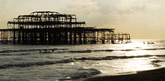 Vecchio pilastro sprofondante di Brighton Immagine Stock Libera da Diritti