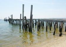Vecchio pilastro su Cape Cod Immagine Stock Libera da Diritti