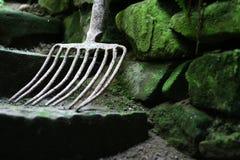 Vecchio pitchfork Fotografie Stock