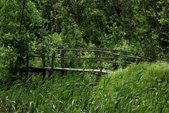 Vecchio ponte Immagine Stock
