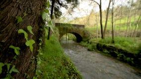 Vecchio ponte della roccia sopra il fiume di Filveda stock footage